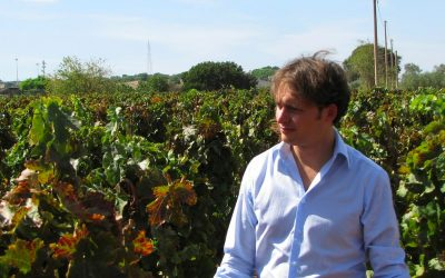 Il mondo del vino & Caltanissetta: ne parliamo con l'enologo nisseno Giuseppe Picone