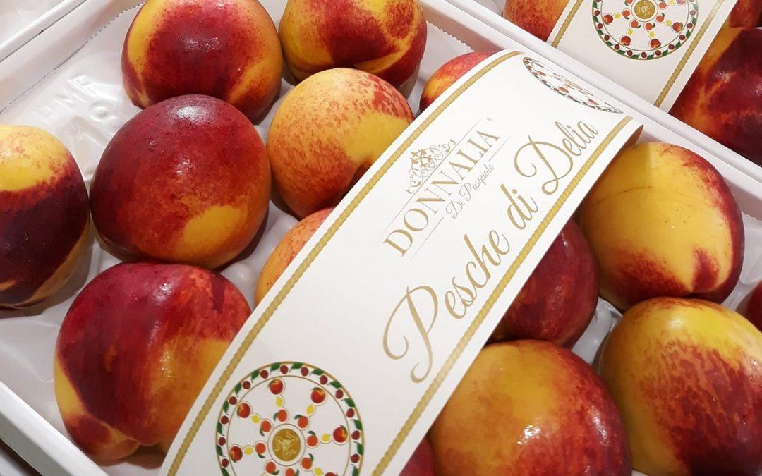 Delia, intervista al giovane imprenditore agricolo Vincenzo Di Pasquale. Il brand Donnalia fruit e la Pesca di Delia IGP