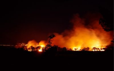 Sicilia Rossa: non solo il Covid anche gli incendi, Riserva di Vendicari in fiamme