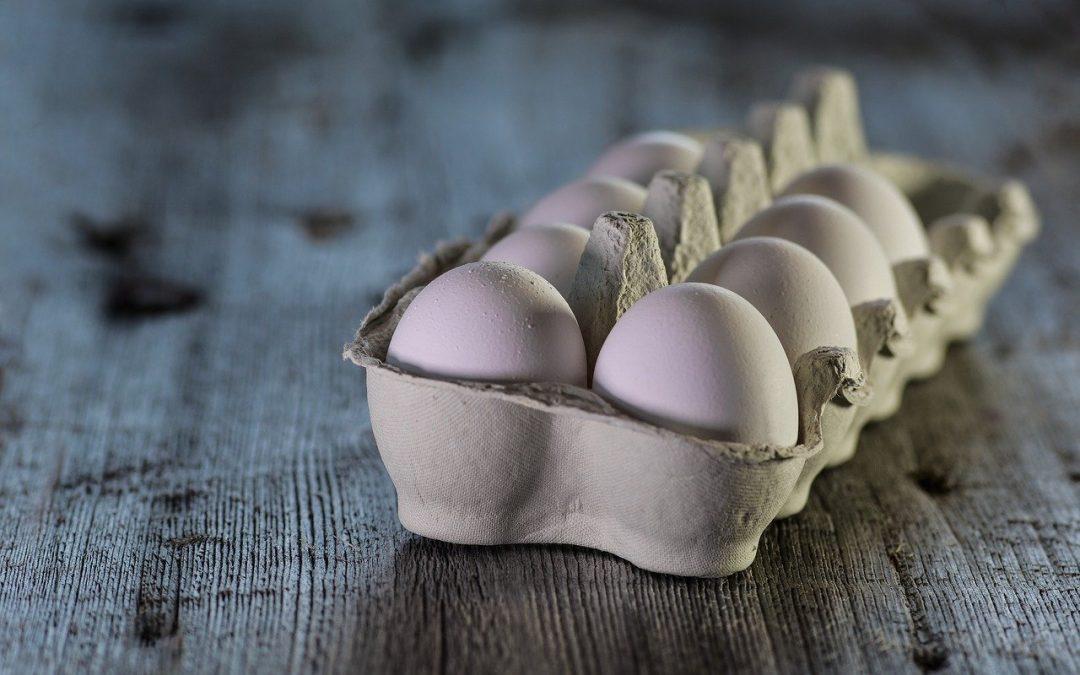 Sicurezza Alimentare in gravidanza (e non solo): fra falsi miti e comportamenti da attuare_pt2